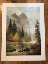 24.75x33.25 SIGNED NUMBERED L/E lithograph WHERE EAGLES SOAR by G. HARVEY, 1979