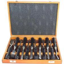 WOOD CARVING PROFESSIONAL Scalpello Set 12pc LEGNO CASE FALEGNAMI strumento 12 pezzi