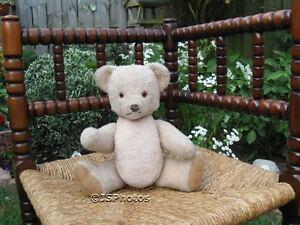 Steiff Petsy Teddy Bear  Dralon L. Beige 0240/30 No IDs