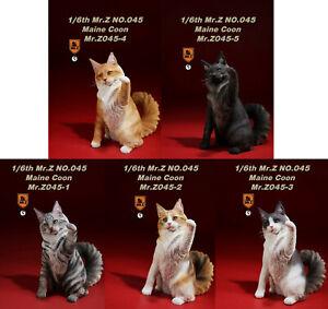 "12"" Action Figures 1/6 Scale Mr.Z MRZ045 Maine Coon Resin Cat Animal Pet Statue"