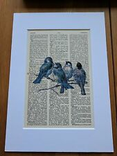 VINTAGE ART DISPLAY OLD DICTIONARY PAGE PAPER PRINT BLUE BIRDS