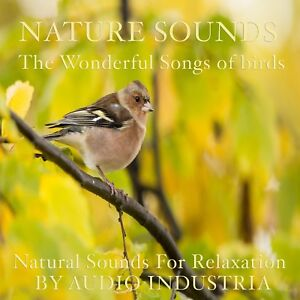 NATURAL SOUNDS BIRD SONG CD RELAXATION STRESS RELIEF CALM HEALING NATURE