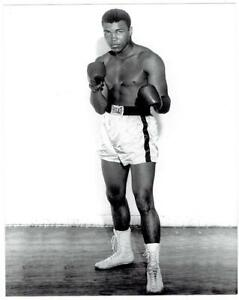 MUHAMMAD ALI ~ Publicity Photo of Young Cassius Clay