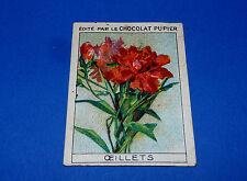 LES FLEURS OEILLETS CHROMO CHOCOLAT PUPIER JOLIES IMAGES 1930