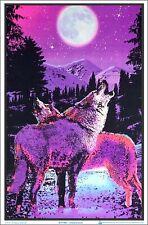 Arctic Aurora Blacklight Poster 23 x 35