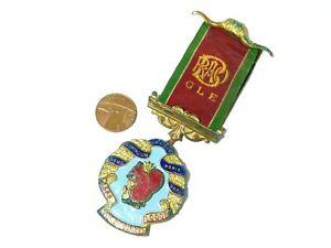 BEDALE  Red Squirrel Lodge 8568 RAOB Enamel Jewel Medal GLE