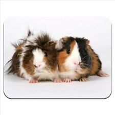 MOUSE MAT 86 Guinea Pig Premium Quality Thick Rubber Mouse Mat Pad Soft Comfort