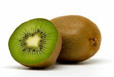 Organic Heirloom 900 Seeds Green KIWI Fruit Tropical Fruit Bearing Vines Edible
