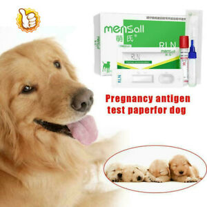 Canine RLX Early Pregnancy Test 99% accuracy