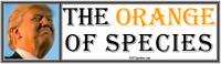 anti Trump:THE ORANGE OF SPECIES humorous political bumper sticker