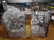 New listing Beautiful 7760 Gm. Etched Campo Del Cielo Meteorite Book Ends