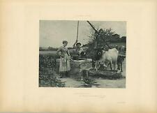ANTIQUE VICTORIAN FARM COUNTRY GIRL BARE FEET OXEN CALF GARDEN BUCKET OLD PRINT