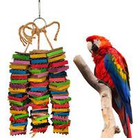LN_ EG_ Parrots Bite Play String Toys Pet Bird Wood Ladder Building Blocks Ser