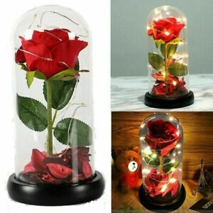 Enchanted Forever Rose Flower In Glass LED Night Light Valentines Day Gift TA