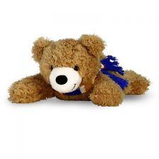 Teddys mit Bär für Alle Anlässe