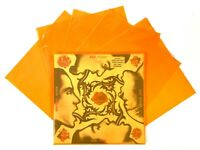 """200 Translucent Orange LP Vinyl Record Sleeves for 12"""" Albums 3mil Outer Jackets"""