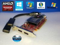 HP Compaq Pro SFF 6005 6200 6250 6300 6305 Low-Profile Dual HDMI Video Card