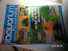 µµ Aquarium à la maison n°97 Crevettes Ancistrus Changer l'eau Crevette Rili