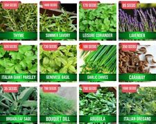 Herb Seeds For Planting, Combo 12 Varieties Collection For Indoor Outdoor Garden