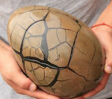 15.84lb AAA HUGE RARE Large Dragon Septarian Crystal Sphere Geode Egg Healing
