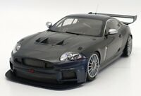 Minichamps 1/18 Scale - 150 081390 - 2008 Jaguar XKR GT3 - Grey Met