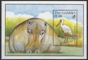 Gambia 1991 MNH MS, African Spoonbill, Water birds, Hippo, Wild Animals