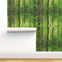 Wallpaper Roll Green Forest Woodland Trees Grove Wood Birch 24in x 27ft