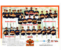 2010 ROCHESTER RED WINGS TEAM 8X10 PHOTO  BASEBALL PLOUFFE GARDENHIRE