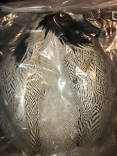 Siver Pheasant Skin