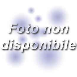 L'ERA GLACIALE 5  SLIM EDITION   DVD ANIMAZIONE