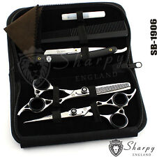 New Professional Hairdressing Scissors Barber Salon Shears SET With Free RAZOR