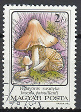 Ungarn Briefmarke gestempelt Pilz Ziegelroter Risspilz Wald Natur 986 / 1365