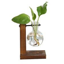 Terrarium Hydroponic Plant Glass Transparent Vase Wooden Stand Home Bonsai Decor