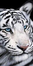 30x60 Large White Tiger Blue Eyes Cruise Vacation Pool Gift Bath Beach Towel
