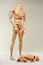 BS0036 BRAND NEW 1/6 1:6 CUSTOM BODY 2 NECK WITH 5 HANDS HT DRAGON TTL