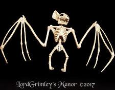 NEW 2017 Bonez Large Hanging Vampire Bat Skeleton Halloween Prop Decoration