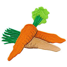 Carrot Orange Foods Fruit Rabbit Bunny Nature Vegetable Iron-On Patches #F031