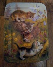 Annaburg Bradford Exchange Kitten Cat Playing Rectangle Plate 1997 German