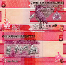 Gambia 5 Dalasi Banknote World Paper Money Unc Currency Pick p-New 2019 Bird