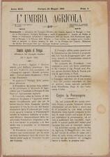 L'UMBRIA AGRICOLA 30 MAGGIO 1895 POLTIGLIA BORDOLESE BORDEAUX MIXTURE ERINOSI