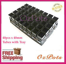 40mm Square Tube / Pots - 40pcs + Tray - FREE Plant Label, Propagation, Seedings