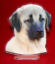 statuette photosculptée 10x15 cm chien berger d'anatolie 2 dog hund perro cane