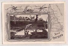 VINTAGE POSTCARD COMING IN THE CEDAR, SUNNY QUEENSLAND 1900s
