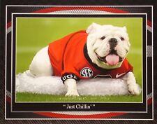Georgia Bulldogs football UGA chillin' print by Greg Gamble