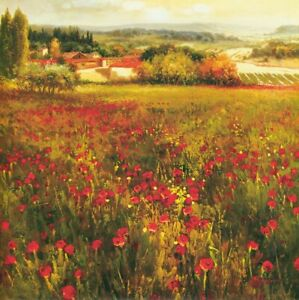 """35W""""x35H"""" FIORI PICCOLI  by K. SOLAMAN - FIELDS OF SMALL POPPIES CANVAS"""