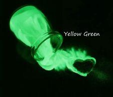 USA Glow in the Dark Pigment Powder Acrylic Gel Nail Art   Glow Nails Custom Mix