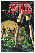 Teenage Mutant Ninja Turtles Volume 3 #2 Fine/Very Fine