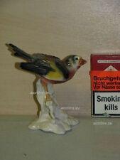 +# A015583_10 Goebel Archiv Muster Vogel Bird Fink Distelfink Goldfinch 38-224