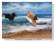 Belgian Shepherd Tervuren Sheepdog Sea Agility OE Art Print SMOAR
