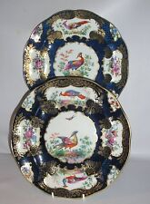 2 Booth's  Cabinet Plates ( Royal Worcester ) Exotic Bird Design. CIRCA 1900